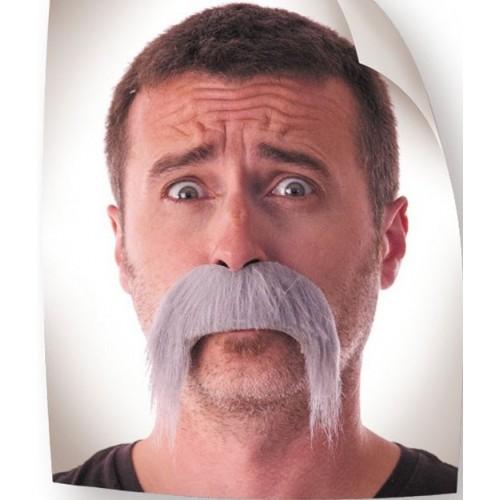 Moustaché kéké grise