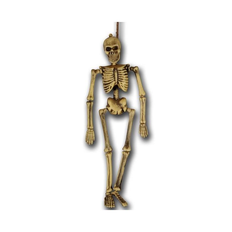 Squelette 40 cm