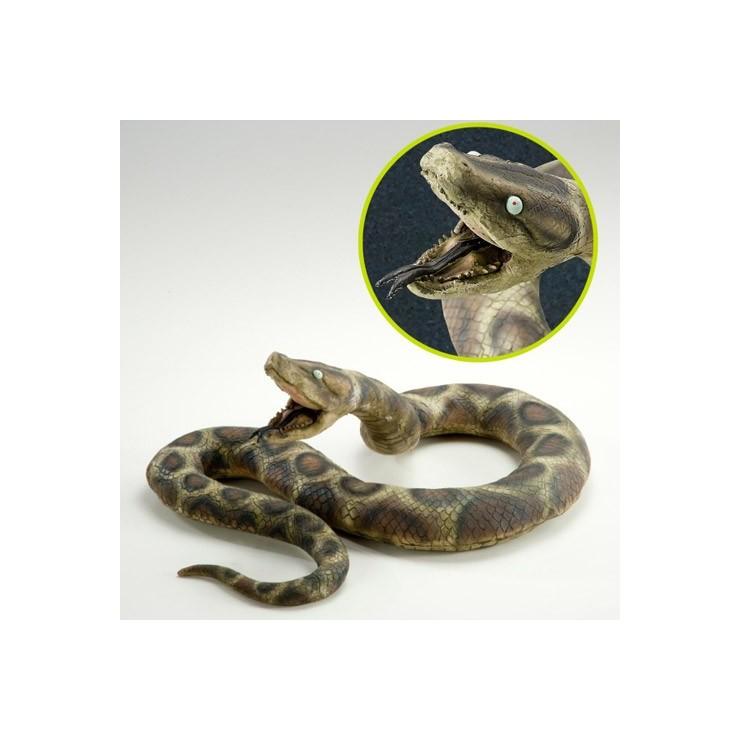 Python 200 cm