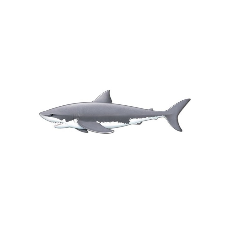 Décoration requin 1.80 m.