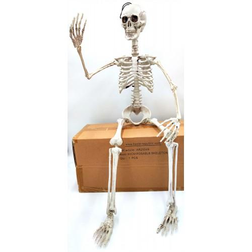 Squelette articulé 90 cm