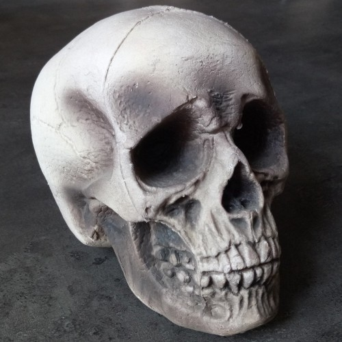 2 crânes 21 cm