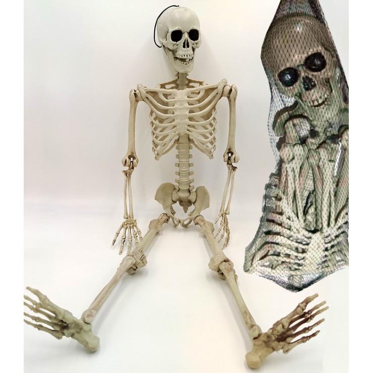 Sac d'ossements à reconstituer