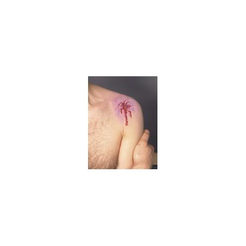 Prothèse blessure éclatée