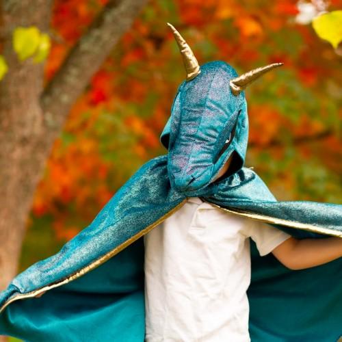Déguisement dragon de minuit