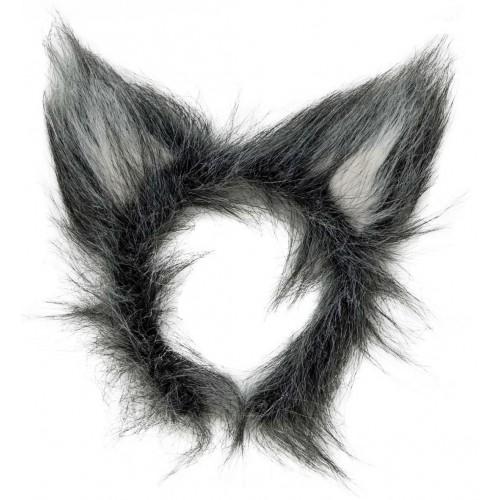 Fauses oreilles de loup gris