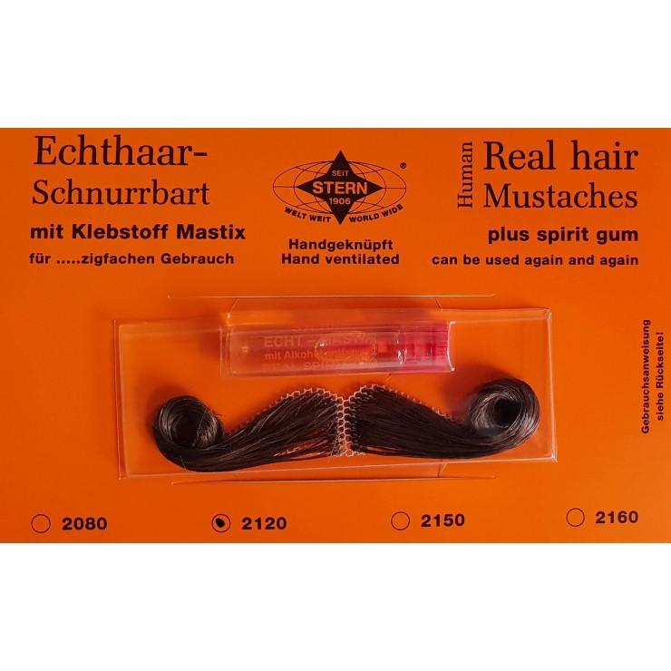 Moustache Bureaucratie brune luxe