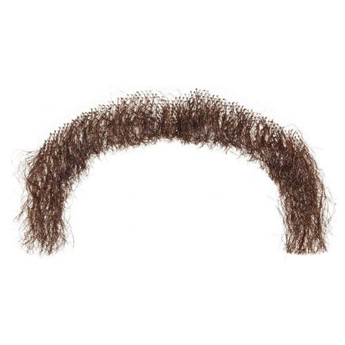 Moustache combattant brune