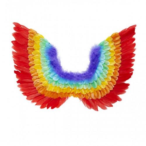 Ailes d'ange multicolores