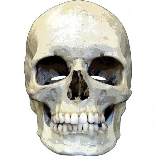 Masque crâne en carton