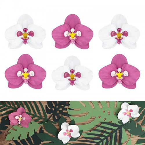 Orchidées deco x6
