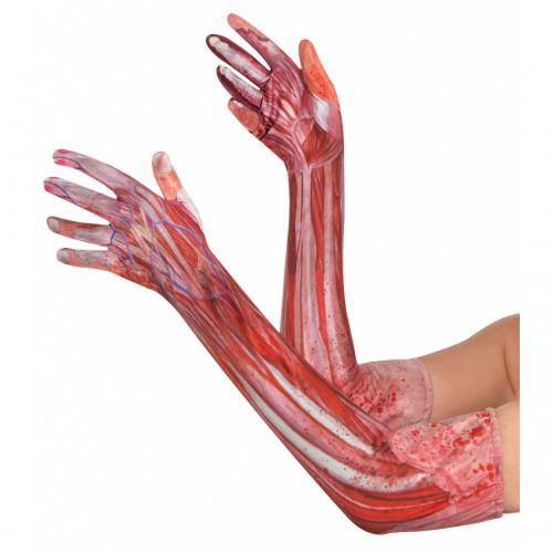Longs gants muscles