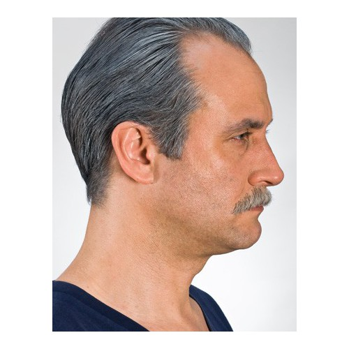 Moustache pro poivre et sel